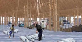 豊洲新市場計画 -間伐小径材を用いたサステナブルな卸売市場の設計-