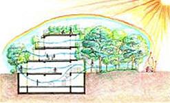 サステナブル集合住宅の風環境計画に関する研究