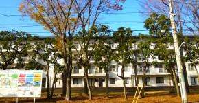 賃貸型集合住宅のリノベーションにおける外部空間の設計手法に関する研究